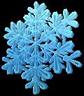 Winter Weather FAQ